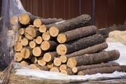 Продаём дрова оптом в Николаеве.