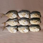 Рыба вяленая и холодного копчения,  креветка-свеже-мор.,  сулугуни ОПТ