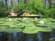 Сплавы по реке Орель (raftingbug.com)