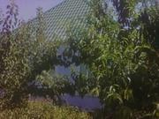 Дом в Ракетной Роще,  улица Привольная