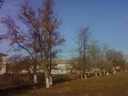 Квартира за городом,  село Центральное