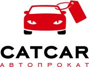 Автопрокат CATCAR. Работаем в Херсоне и Николаеве!