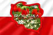 Польский язык  в Николаеве. Курсы польского языка в Николаеве. УЦ твой