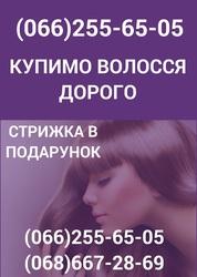 Скупка волос Николаев Продать волосы в Николаеве дорого