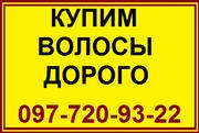 Волосы. Продажа волос в Николаеве. Скупка волос. Продать волосы дорого