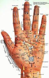 Диагностика всего организма по аккупунктуре на руке