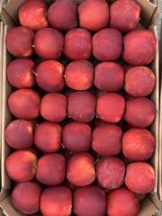 Продам яблоки со своего сада. Урожай 2019 г