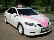 Белоснежные свадебные автомобили Toyota Camry Hybrid и Hyundai Tucson